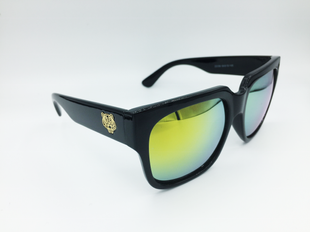 VALTTERI Sunglasses black